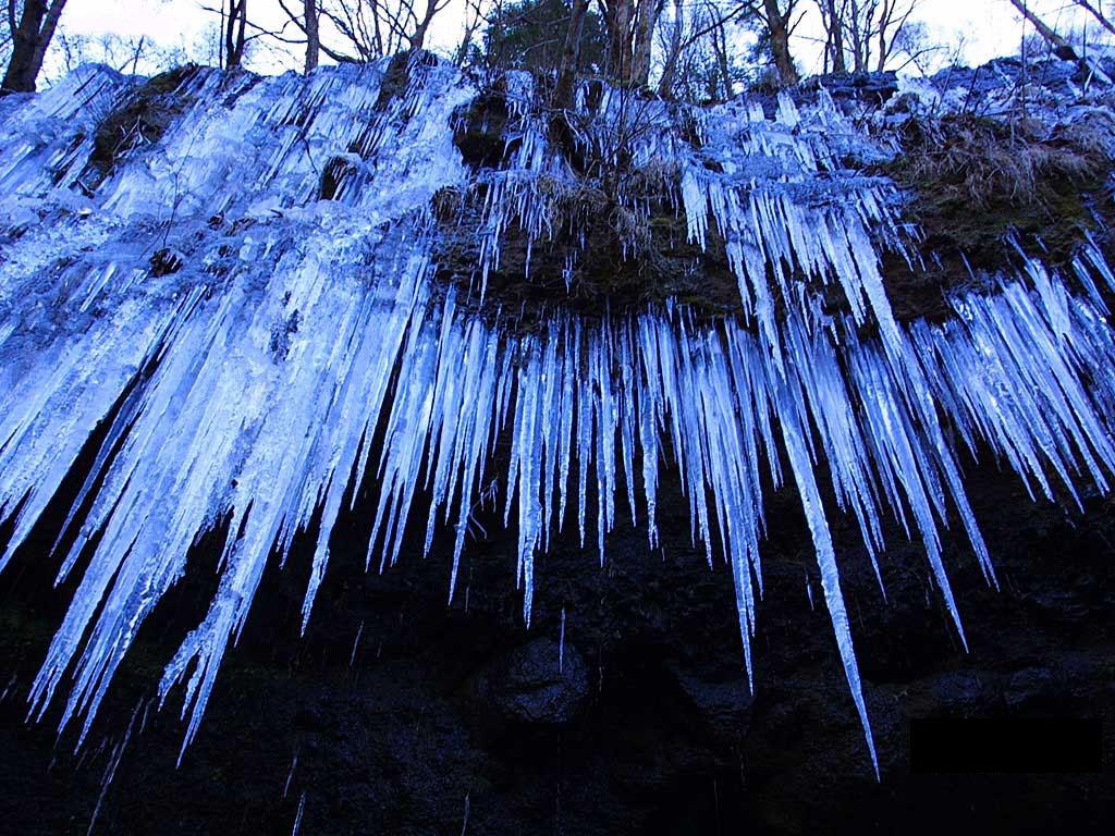 傲雪凌冬 绮丽世界 - 香儿 - xianger