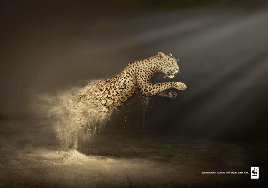 全球优秀创意公益广告集锦-设计欣赏-素材中国图片