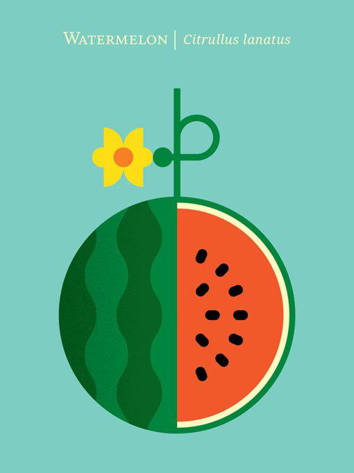 水果海报设计