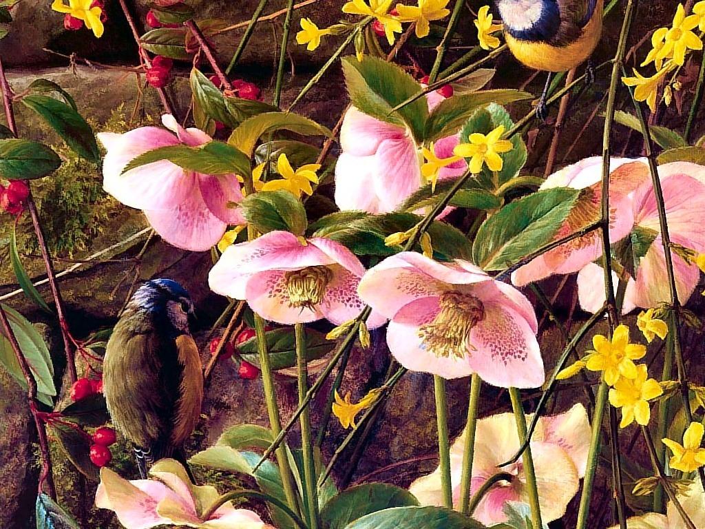 手绘植物动物
